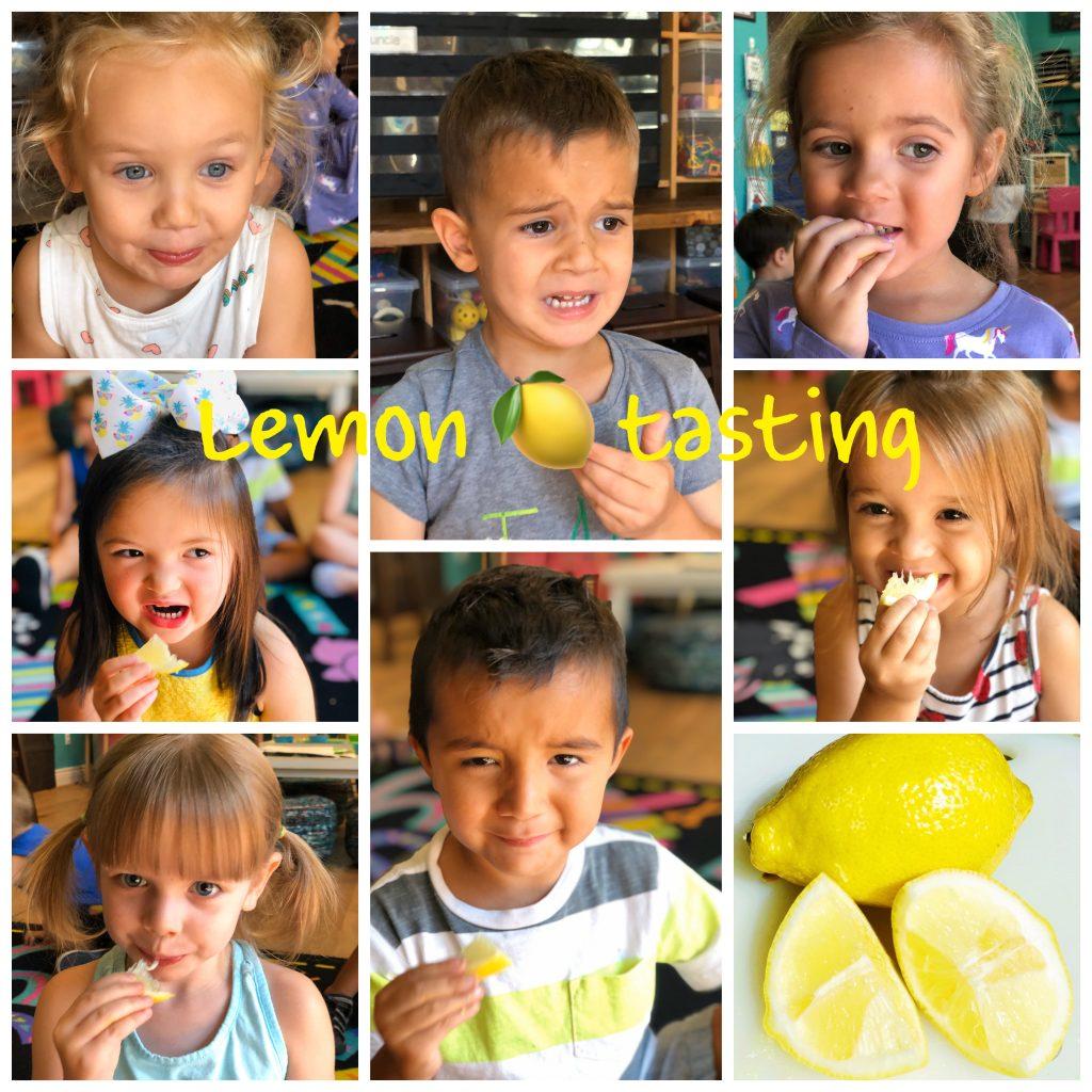 preschool-lemon-tasting